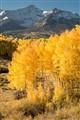 Colorado autumn, Maroon Bells