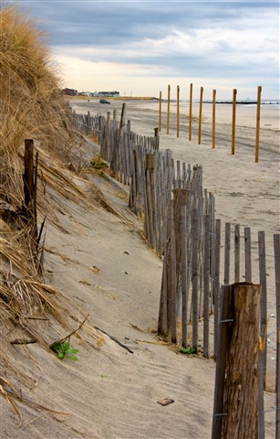 Stone Harbor Point 2_DSC6321