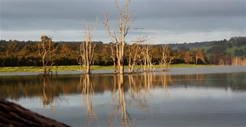 harvey dam 2