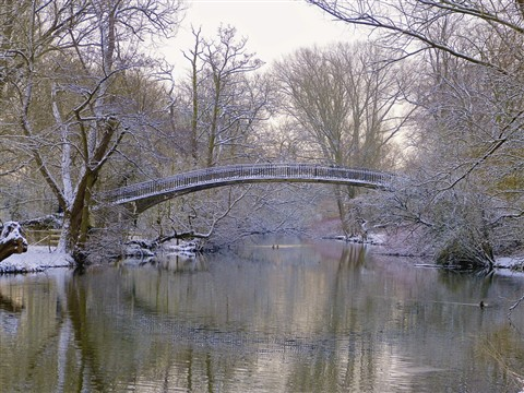 Icy Bridge over the Cherwell