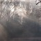 Misty view across the Clarion River (D700)