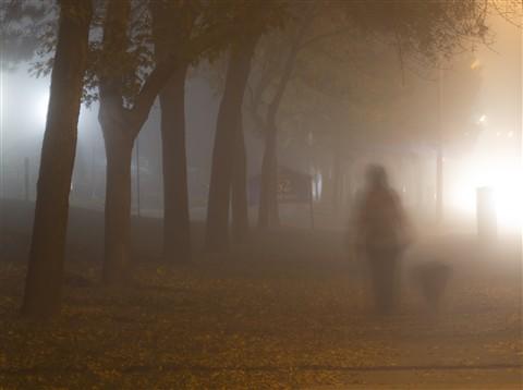 Fog walker-1