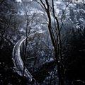 Express to Narnia