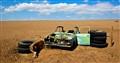Gobi Desert Wreck