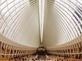 The Oculus, NYC (USA)