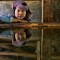 Burmese farm girl