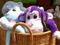 Basket Full of Monkeys