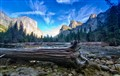 Wood in Yosemite