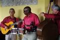 La Divina Pastora Restaurant Müzisyenler