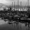 Ventura Harbor BW