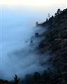 Tehachapi Fog
