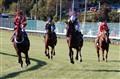 Four horse race