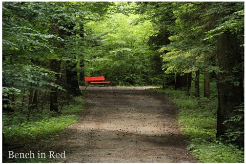 bench in red