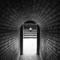 2017-01-01 New Zealand Hamilton Gardens 14 Tunnel Man BW SFX
