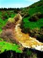 The Upper Jordan River