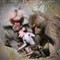 Baboon family1