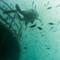 UnderwaterChallenge