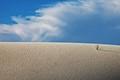 Arrakis Landscape