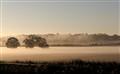 fogg rolling in