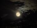 Night Sky By Supermoon Light