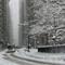 Snow Fall-NYC