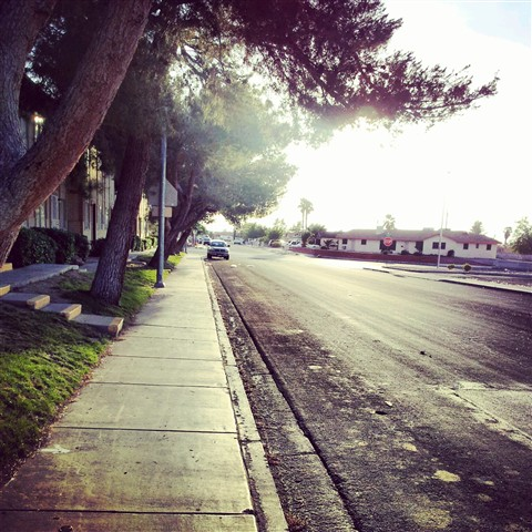 i walk along this path everyday hoping to run into you