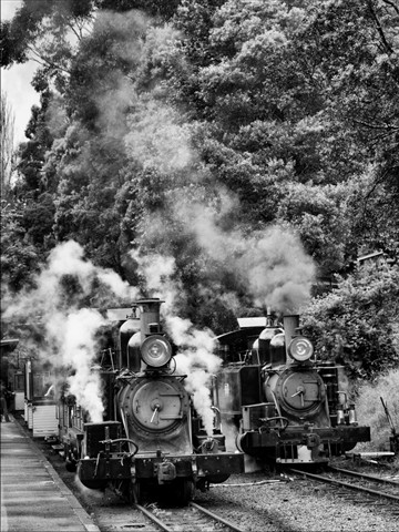 Puffing Billy Dandenongs Victoria