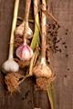 Garlic & Peppercorns