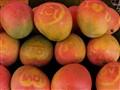 Love Mango
