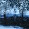 Vinterspegel-1751m