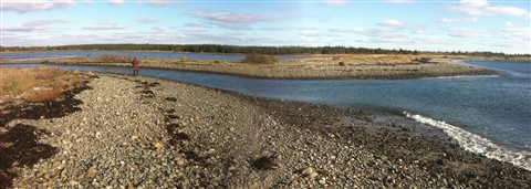Pond Cove panoramic
