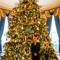 White House Xmas Tree