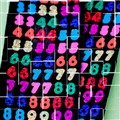 The Numbers Puzzle