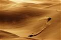 Cotton Dunes