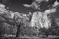 El Capitan from Yosemite valley.