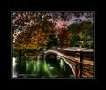 green pond 1