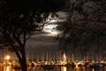 Moonlight over Matilda Bay