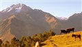 Peruvian Landscape Edit