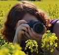 Photographing canola flowers 2