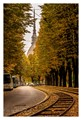 Autum In Turin