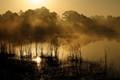 Marl Pond Dawn web
