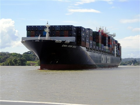 Container Ship (Larger than a cruise ship)