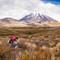 2012-11-29 New Zealand Tongariro Circuit Backpack Jo Trail Path