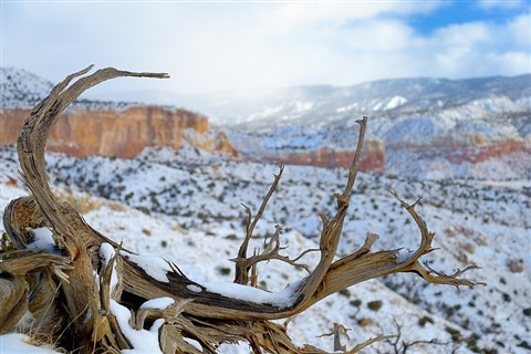 Ghost Ranch - Chimney Rock -Abiquiu (3)