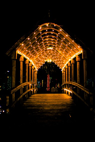 Christmas bridge