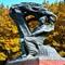 Warsaw-Łazienki-Frederic Chopin's monument