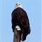 AMERICAN BALD EAGLE 3