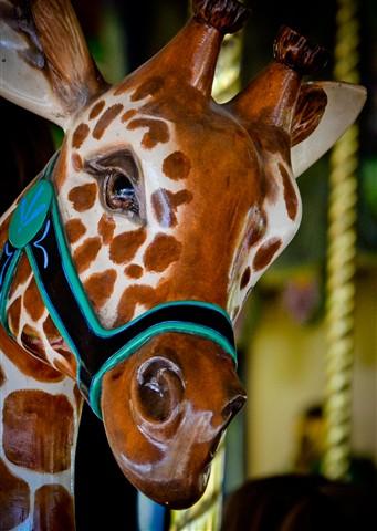 Carousel Giraffe 2 (1 of 1)