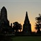 Sunset behind chedi and tree - Wat Chai Wattanaram