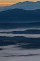 Valley Fog at Dawn
